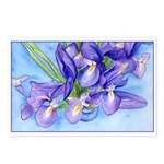 Iris Vase Postcards (Package of 8)