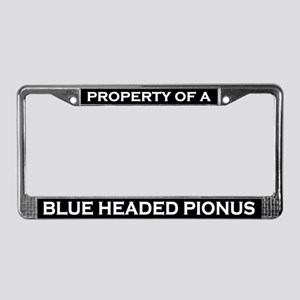 Property of Blue Headed Pionus License Plate Frame