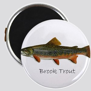 Painting of Brook Trout Magnets