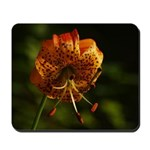 Columbia Lily Mousepad