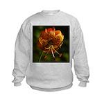 Columbia Lily Kids Sweatshirt