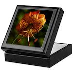 Columbia Lily Keepsake Box