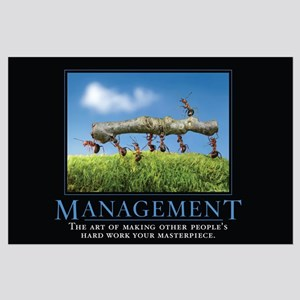 Management Large Poster