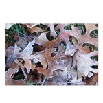 frosted leaves Postcards (Package of 8)