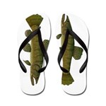 Amazon Wolf fish Trahira Flip Flops