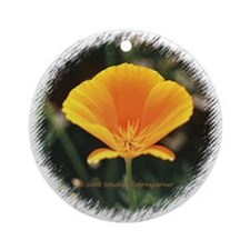 California Poppy Ornament (Round)