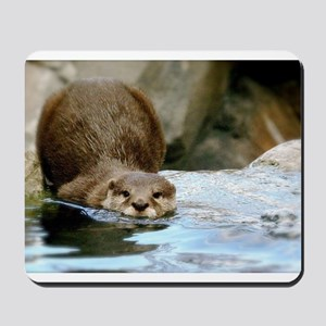 River Otter (Gone Fishin') Mousepad