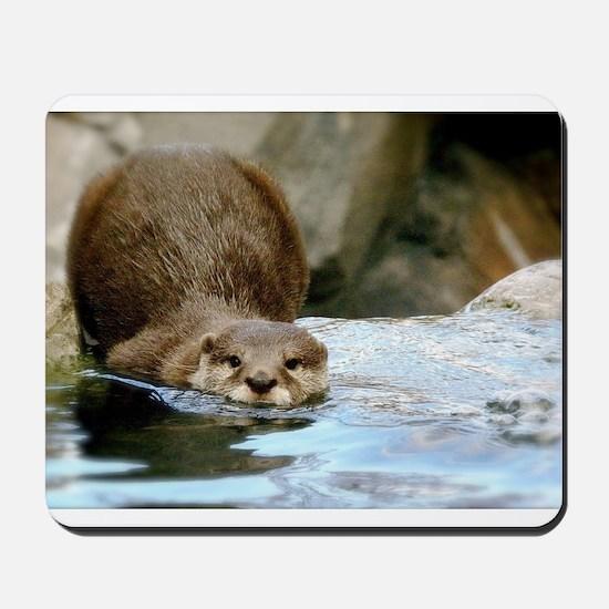 River Otter (Gone Fishin') Mousepad
