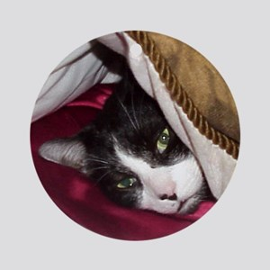 Mr Pig Cat Ornament (Round)