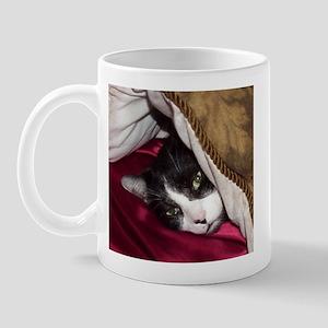 Mr Pig Cat Mug
