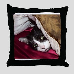 Mr Pig Cat Throw Pillow