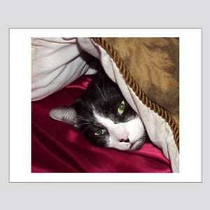 Mr Pig Cat Small Poster