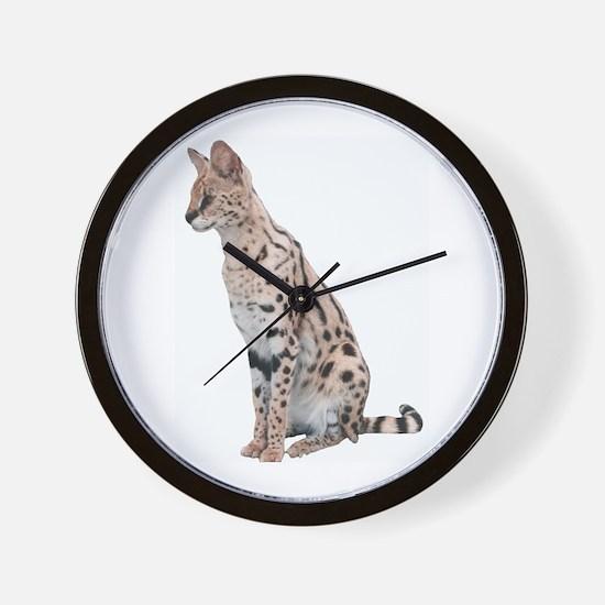 KiaraServal Men's Wear Wall Clock