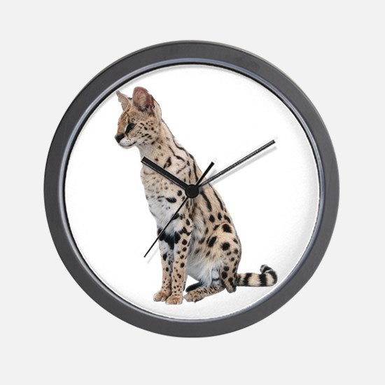 KiaraServal Home & Office Wall Clock