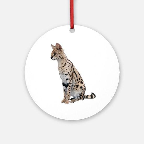 KiaraServal Kids & Pets & Fun Ornament (Round)