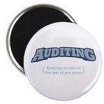 Auditing - Eye Magnet