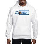 Israel 2 Hooded Sweatshirt