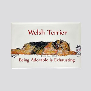 Exhausted Welsh Terrier Rectangle Magnet