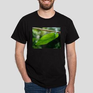 DSC00812 T-Shirt