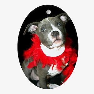 Pitbull puppy Ornament (Oval)