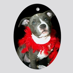 Pitbull puppy Ornament (Oval)