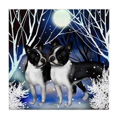 BOSTON TERRIER DOGS WINTER NIGHT Tile Coaster