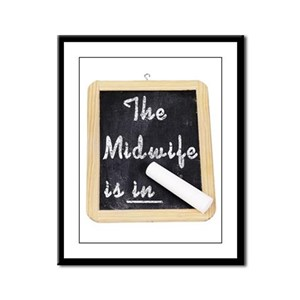 The Midwife Is In Framed Panel Print