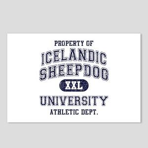 Icelandic Sheepdog U Postcards (Package of 8)