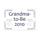 Grandma-to-Be 2010 Mini Poster Print