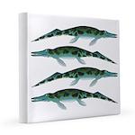 Cymbospondylus 8x8 Canvas Print