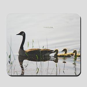 Goose Family Mousepad