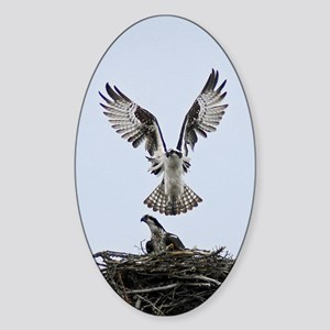 Osprey Pair Sticker (Oval)