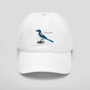 Western Scrub Jay Cap
