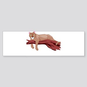 cougar Bumper Sticker