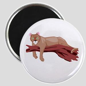 cougar Magnet
