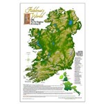 Sister Fidelma Large Poster