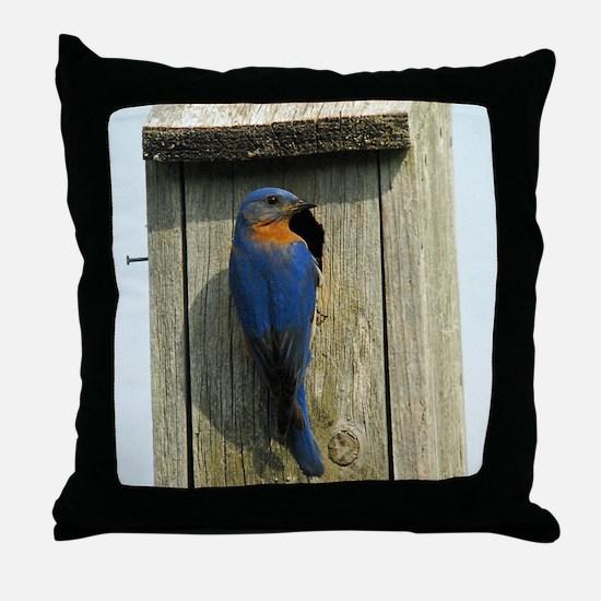 Bluebird Family Throw Pillow
