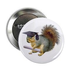 Squirrel Graduation 2.25