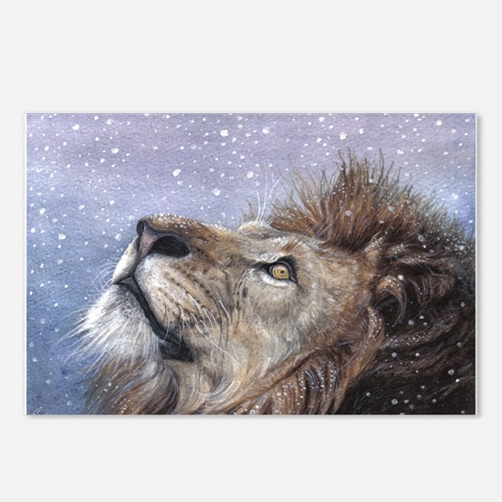 Winter Lion Postcards (Package of 8)