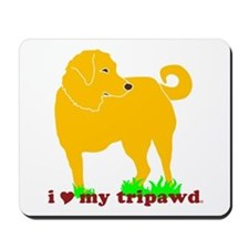Golden Tripawd Love Mousepad