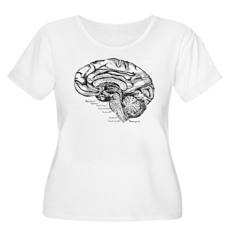 1887 Brain 2 Women's Plus Size Scoop Neck T-Shirt