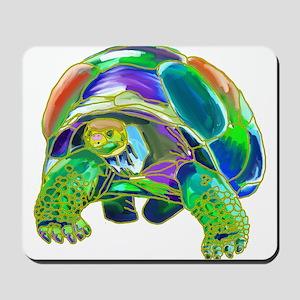 Rainbow Tortoise Mousepad