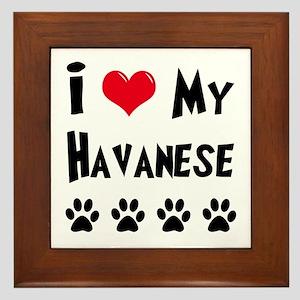 I Love My Havanese Framed Tile
