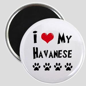 I Love My Havanese Magnet