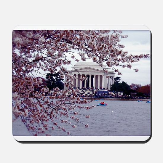 Cherry Blossoms, Washington, DC Mousepad