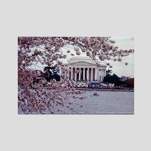 Cherry Blossoms, Washington, DC Rectangle Magnet