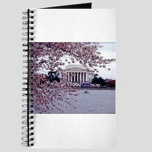 Cherry Blossoms, Washington, DC Journal