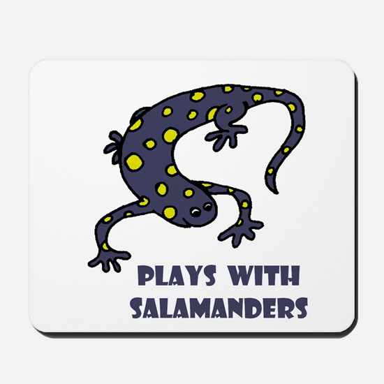 Plays With Salamanders Mousepad
