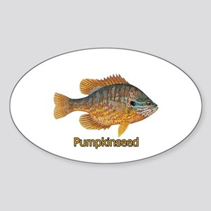 Pumpkinseed Sunfish Sticker (Oval)