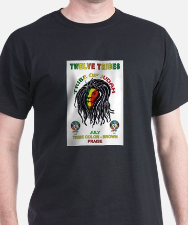 Funny Twelve tribes T-Shirt